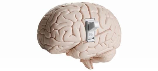 Brain SwitchJpeg